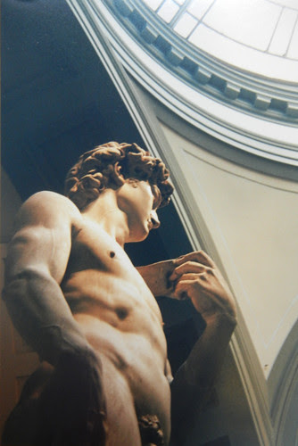 David, Michelangelo, Galleria dell'Accademia, Firenze _ 8972_500