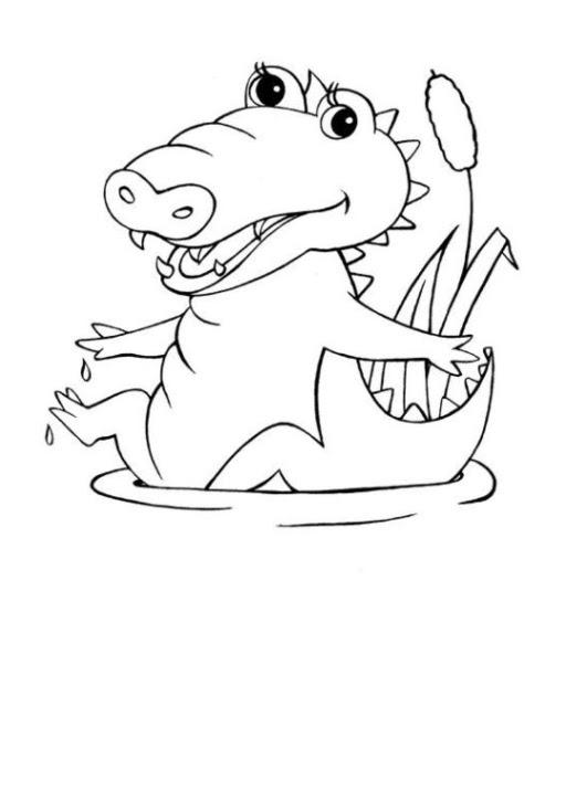 ausmalbild krokodil kostenlos  cartoonbild