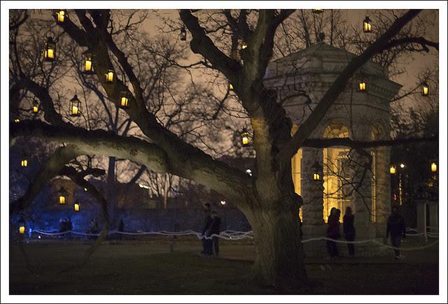 Garden Glow 2013-12-20 5 (Shaw's Tomb)