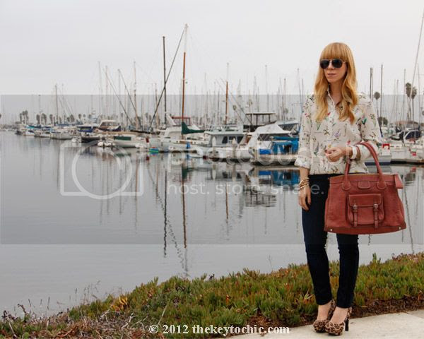 Zara botanical blouse, 7 for all mankind skinny side stripe jeans, Mossimo Paisley leopard print pumps, Chloe Edith handbag in whiskey, Los Angeles fashion blog