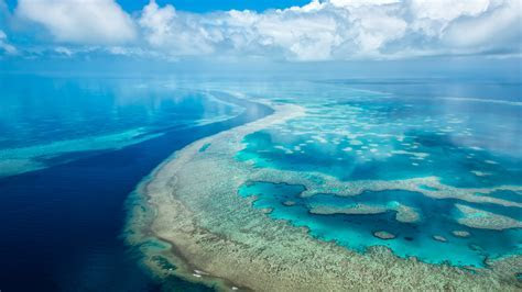 Wallpaper Microsoft Surface Hub, Great Barrier Reef, 4K
