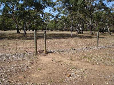 Kangaroo gate_Inverleigh Common