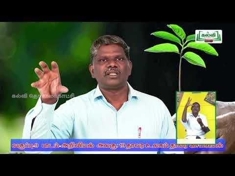 9th Science தாவர உலகம், தாவர செயலியியல்  அலகு 1 Kalvi TV