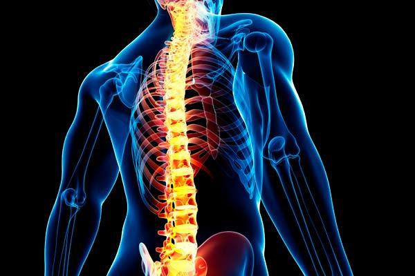 Problemas y enfermedades de la columna vertebral1