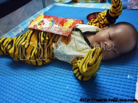 Jordan's Full Moon Celebration,Jordan's Baby Tiger Outfit