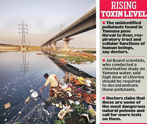The rise in levels of cyanotoxins and other unidentified pollutants found in Yamuna may pose severe health risks