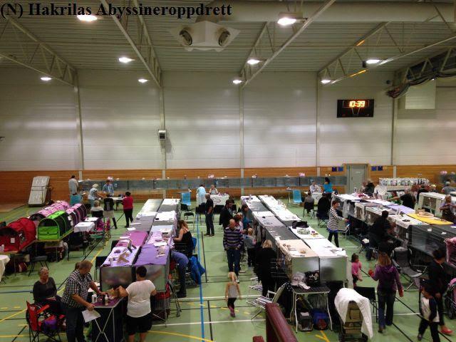 23.08 - 24.08.2014 var det duket for Vestkystkatten sin utstilling i Averøyhallen :)