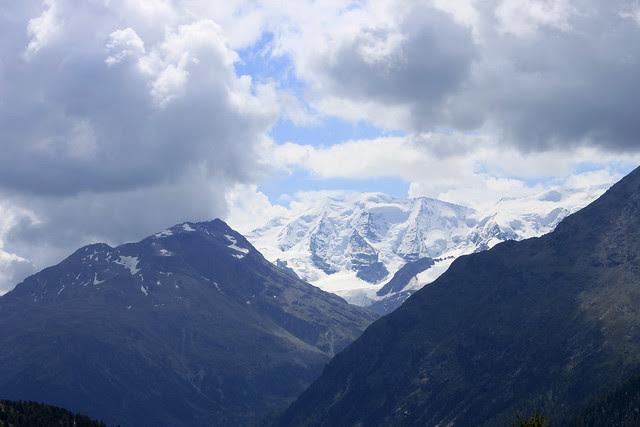 Bernina Blick vom unteren Schafberg