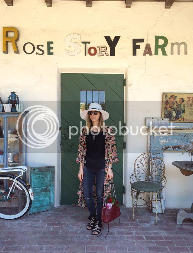 Rose Story Farm-1