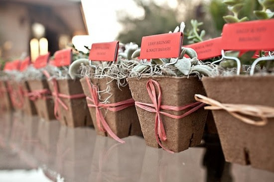 Succulent Seating Cards 550x366