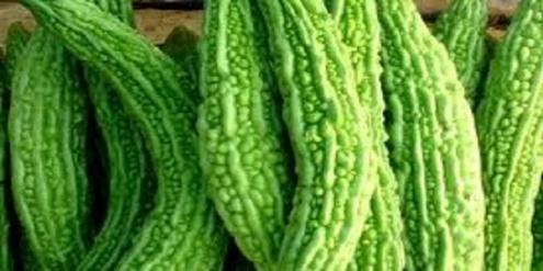 ιαπωνικό-φυτό-κατά-του-καρκίνου
