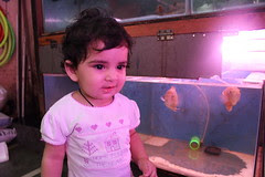 Nerjis Asif Shakir First Visit To A Pet Shop by firoze shakir photographerno1