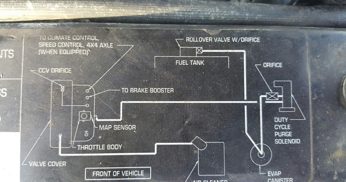 Jeep Wrangler Evap System Diagram