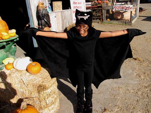 One Cool Bat