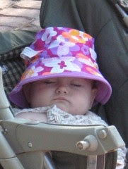 Sasha Fox sleeps