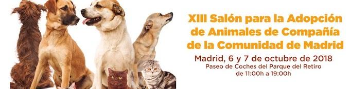¡Adopta a tu mascota en El Retiro de Madrid!