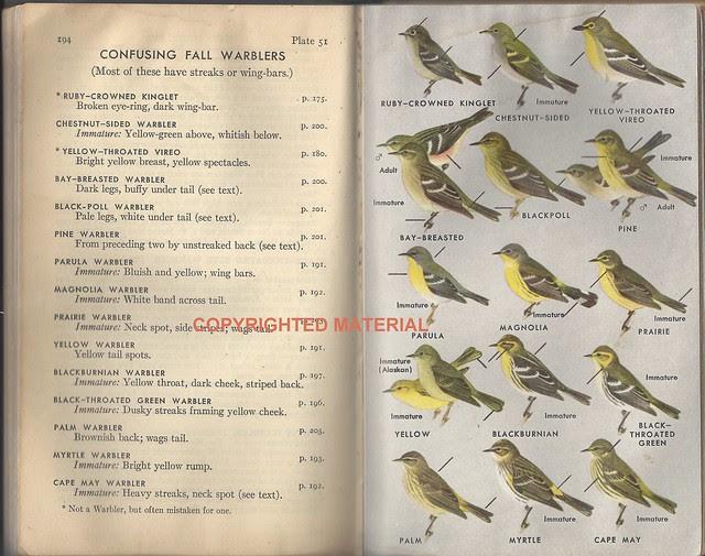 Peterson Warblers 1947