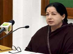 Get 10 Fishermen Freed From Kuwait, Jayalalithaa Urges PM Modi
