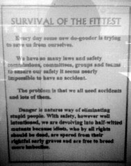 Cuba St poster - 'Survival of the Fittest'