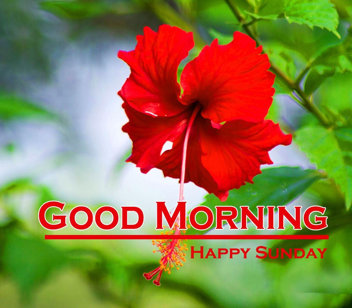 Sunday Good Morning Images 4 1