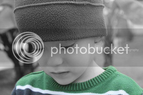 photo IMG_0221e_edited-1_zpsb8be1f4a.jpg