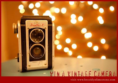 WinaVintageCameraatBrooklynLimestone