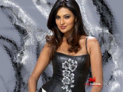 MQ - Malayalam Queens: Cute Divya Nagesh Navel Thigh Show