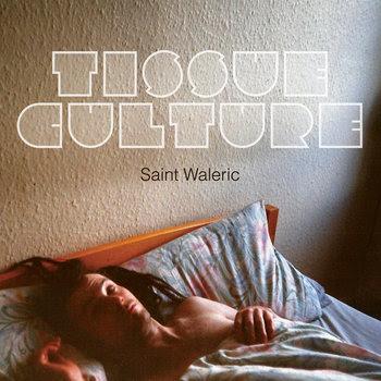 Saint Waleric cover art