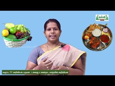 4th Science அன்றாடவாழ்வில் அறிவியல்  உணவு பொருட்கள்பருவம் 2 அலகு4 பகுதி2 Kalvi TV