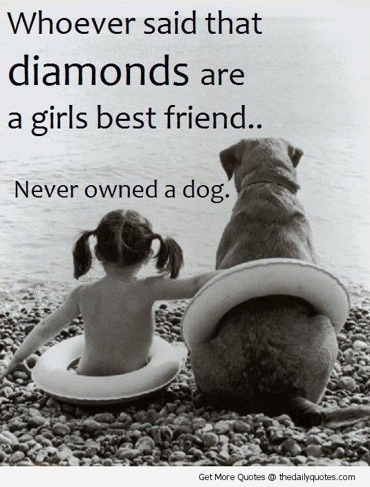 Quotes Love My Dog. QuotesGram