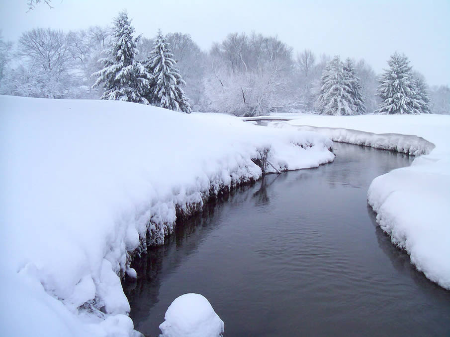 Heavy Snow By River