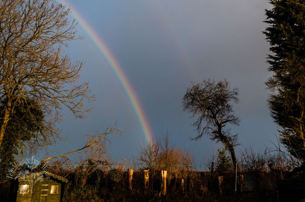 Fri 8. Feb, Rainbow always go somewhere... on my way to that pot of gold!