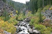 Crooked Creek in Gospel Hump Wilderness, Idaho