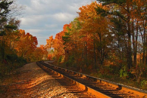 Rails of Color