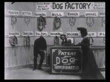 File:Dog Factory (1904).ogv