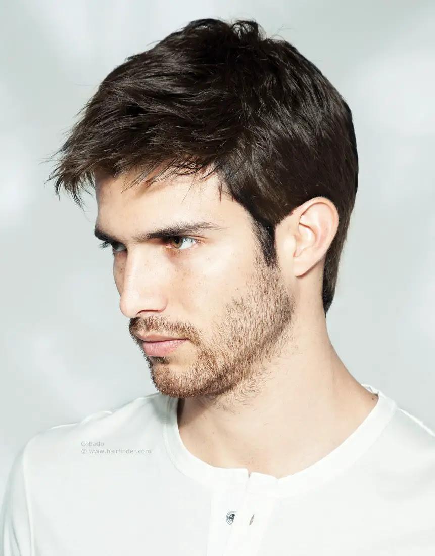 Short Hairstyles Men   Trendy Hairstyles