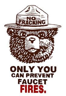 Modified Smokey the Bear meme. (Lmnopi.blogspot.com/Lopi LaRoe)