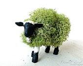 Moss Animal Topiary: Miniature Lamb Sheep Figurine - DoodleBirdie