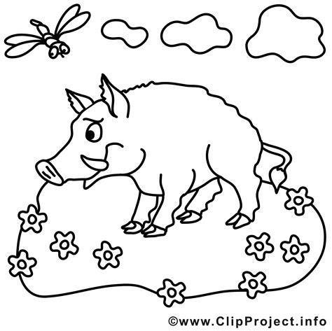 ausmalbilder tiere wildschwein - kostenlose malvorlagen ideen