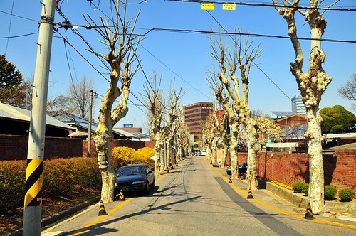 Officials' Village, Daejeon