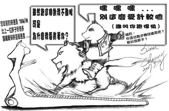 在跑步機上狂奔的貓熊&狼