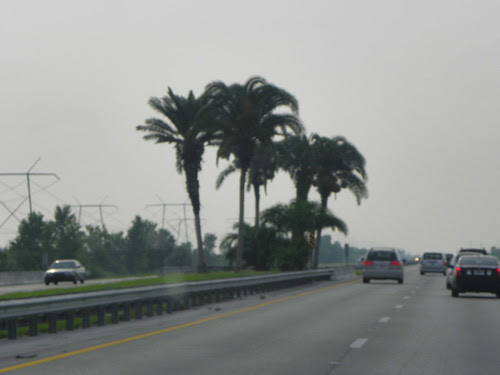 6.21.2009 do Miami, Florida (2)