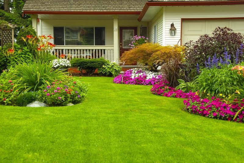 Garden Design Services Near Me
