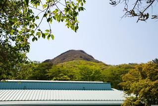 水沢観音寺裏手に見える水沢山頂上付近