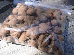 Heart Nuts, Windmill Point Farm