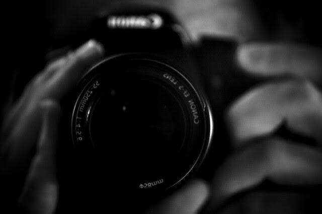 Camera - Shy