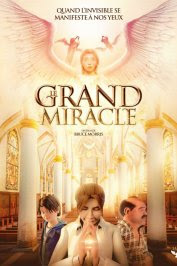 background picture for movie Le Grand Miracle