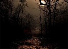 Moonlight on Otter Creek