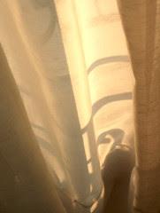 rideau et lumière