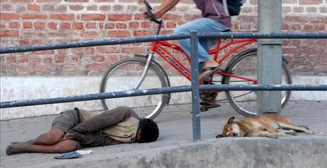 El último registro de menores desprotegidos corresponde a 2015 y eleva la cifra a 3.342 niños en esta situación. En la imagen, un niño mendigo duerme junto a un perro en la calle. EFE